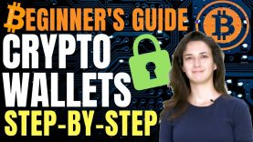 Cryptocurrency Wallets for Beginners (Step-by-Step Ledger & Trezor Guide)