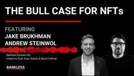 32 – The Bull Case for NFTs | Jake Burkhman & Andrew Steinwold