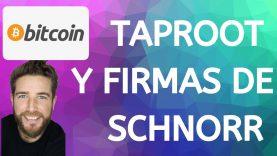 BITCOIN QUE ES TAPROOT Y FIRMAS DE SCHNORR! EXPLICACIÓN SIMPLE!!