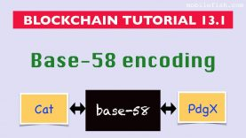 Blockchain tutorial 13.1: Base-58 encoding