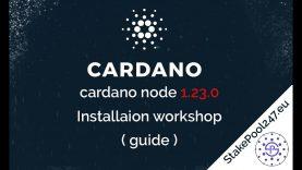 Cardano node (v 1.23.0)  installation guide / workshop