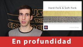 Diferencias entre Hard Fork & Soft Fork