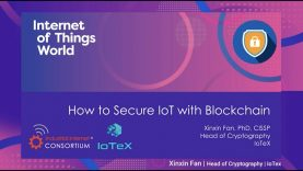 How to Secure the IoT with Blockchain @ [IoT World 2020]