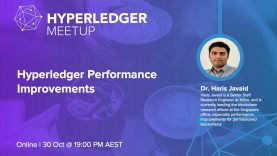 Hyperledger Performance Improvements (Presentation, Demo and Discussion)