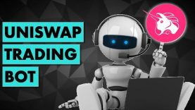 I coded a trading bot for Uniswap | Sniping Bot
