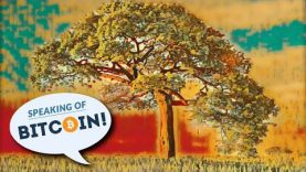 Privacy and Scale – Everything you need to know about Bitcoin's Taproot (SOB#455)