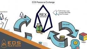 REX – EOS Resource Exchange Walkthrough