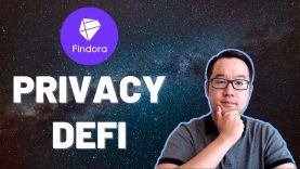 This DeFi project is tackling big PRIVACY concerns! (Findora)