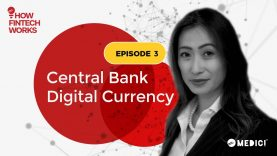 Three ways to implement CBDC | Central Bank Digital Currency | Episode 3 | How FinTech Works