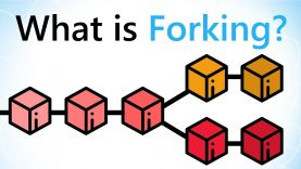 What are Blockchain Forks?